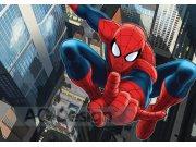 Foto tapeta AG Spiderman FTDS-2209 | 360x254 cm Foto tapete