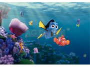 Foto tapeta AG Nemo FTDS-2223 | 360x254 cm Foto tapete