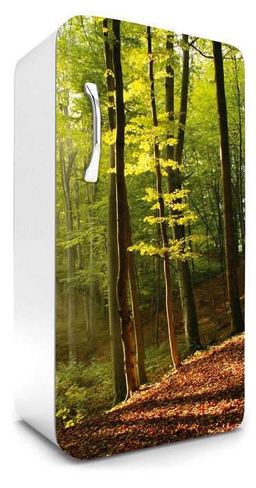Samoljepljiva foto tapeta za hladnjak Šuma FR-120-028, 65x120 cm - Foto tapete