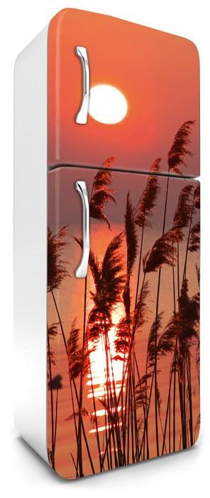 Samoljepljiva foto tapeta za hladnjak Trska FR-180-027, 65x180 cm - Foto tapete