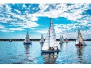 Flis foto tapeta Dimex Jedriličarska regata XL-184 | 330x220 cm Foto tapete