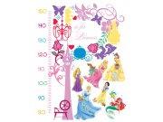 Dječje naljepnice Princeze metar DK-0893, 85x65 cm Naljepnice za dječju sobu