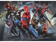 Foto tapeta AG Spiderman FTDM-0751 | 160x115 cm Foto tapete