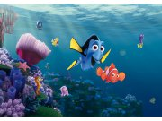 Flis foto tapeta AG Nemo FTDNXXL-5061 | 360x270 cm Foto tapete