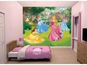 3D foto tapeta Walltastic Disney Princeze 43800 | 305x244 cm Foto tapete