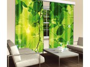 Zavjesa Zeleno lišće CU-280-014, 280x245 cm Foto zavjese