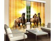 Zavjesa Konji CU-280-019, 280x245 cm Foto zavjese