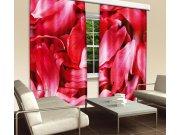 Zavjesa Crvene latice CU-280-017, 280x245 cm Foto zavjese