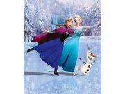 3D foto tapeta Walltastic Frozen 43909 | 203x243cm Foto tapete