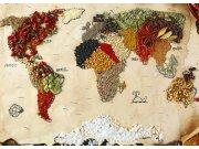 Flis foto tapeta AG Karta svijeta sa začinima FTNXXL-2484 | 360x270 cm Foto tapete