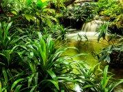 Flis foto tapeta AG Prirodna laguna FTNXXL-2491 | 360x270 cm Foto tapete