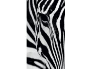 Foto zavjesa Zebra FCPL-6519, 140 x 245 cm Foto zavjese