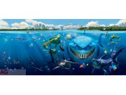 Flis foto tapeta AG Nemo i morski pas FTDNH-5313   202x90 cm Foto tapete