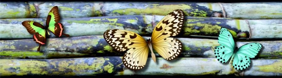 Samoljepljiva bordura Leptiri WB8238 - Samoljepljive bordure