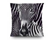Dekorativni jastuk Zebra CN-3605, 45 x 45 cm Dekorativni jastuci