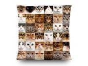 Dekorativni jastuk Mačke CN-3615, 45 x 45 cm Dekorativni jastuci