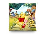 Dekorativni jastuk Winnie Pooh CND-3119, 40 x 40 cm Dekorativni jastuci