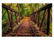 Flis fototapeta Željeznica u šumi MS50055 | 375x250 cm Foto tapete