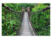 Flis foto tapeta Most v šumi MS50084 | 375x250 cm Foto tapete