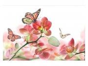 Flis foto tapeta Leptiri i orhideje MS50146 | 375x250 cm Foto tapete