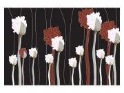Flis foto tapeta Cvijeće na crnoj pozadini MS50155 | 375x250 cm Foto tapete