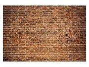 Flis foto tapeta Stari zid od cigle MS50167   375x250 cm Foto tapete