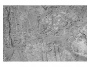 Flis foto tapeta betonski pod MS50173   375x250 cm Foto tapete