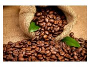 Flis foto tapeta Zrnca kave MS50244 | 375x250 cm Foto tapete