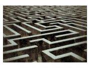 Flis fototapeta 3D labyrint MS50279 | 375x250 cm Foto tapete