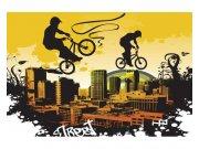 Flis fototapeta Biciklisti MS50326 | 375x250 cm Foto tapete