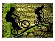Flis foto tapeta Zeleni bicikl MS50328 | 375x250 cm Foto tapete