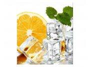 Flis foto tapeta Limun i led MS30238 | 225x250 cm Foto tapete
