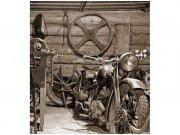 Flis foto tapeta Stara garaža MS30319 | 225x250 cm Foto tapete