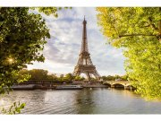 Flis foto tapeta Seina u Parizu MS50028 | 375x250 cm Foto tapete