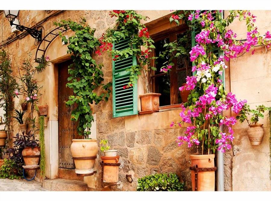 Flis foto tapeta Vrt na ulici MS50046   375x250 cm - Foto tapete