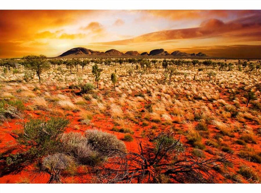 Flis foto tapeta Australija MS50050 | 375x250 cm - Foto tapete