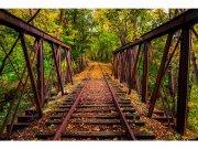 Flis foto tapeta Željeznica u šumi MS50055 | 375x250 cm Foto tapete