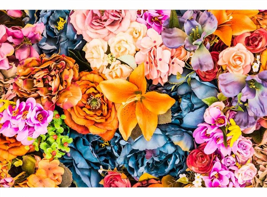 Flis foto tapeta Osušeno cvijeće MS50143 | 375x250 cm - Foto tapete