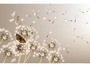 Flis foto tapeta Maslačak i leptir MS50148 | 375x250 cm Foto tapete