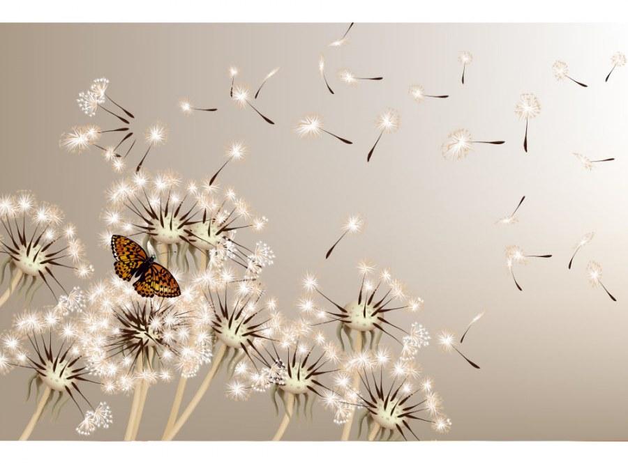 Flis foto tapeta Maslačak i leptir MS50148 | 375x250 cm - Foto tapete