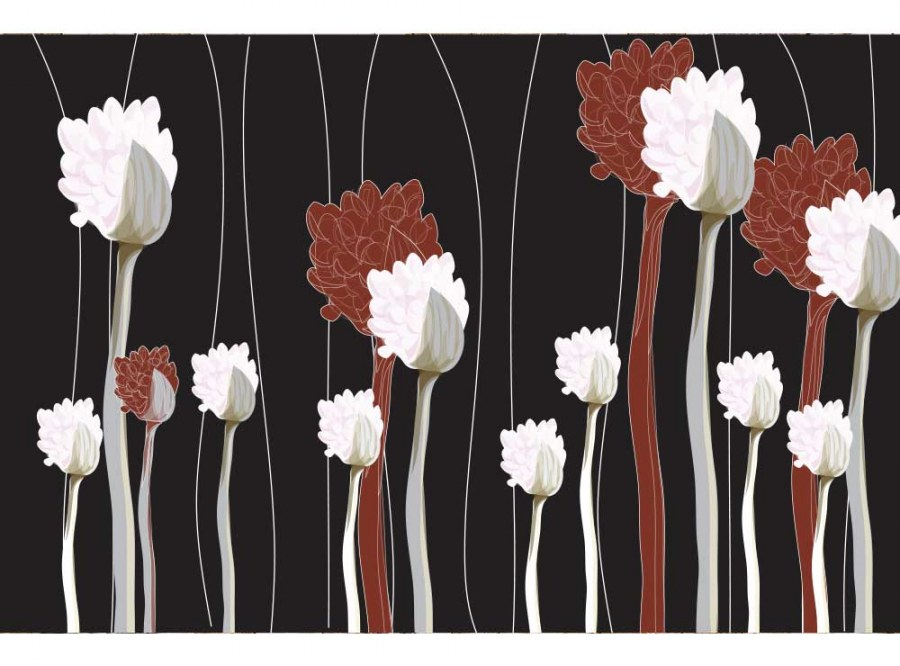 Flis foto tapeta Cvijeće na crnoj pozadini MS50155 | 375x250 cm - Foto tapete