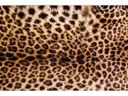 Flis foto tapeta Leopardna koža MS50184 | 375x250 cm Foto tapete