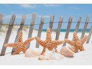 Flis foto tapeta Zvjezdice na plaži MS50206 | 375x250 cm Foto tapete