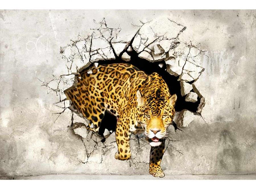 Flis foto tapeta Pantera na lovu MS50233 | 375x250 cm - Foto tapete