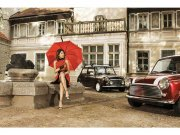 Flis foto tapeta Dama v crvenom MS50257 | 375x250 cm Foto tapete