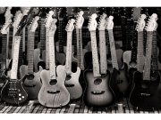 Flis foto tapeta Kolekcija gitara MS50303 | 375x250 cm Foto tapete