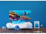Flis foto tapeta Disney Dori i Nemo FTDNH-5379 | 202x90 cm Foto tapete