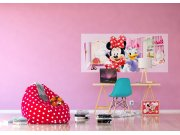 Flis foto tapeta Minnie i Daisy FTDNH-5383 | 202x90 cm Foto tapete