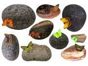 Samoljepljiva dekoracija Kamenje i leptiri SM-3436, dimenzije 42,5 x 65 cm Naljepnice za zid