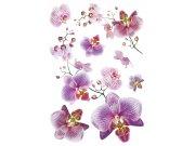 Samoljepljiva dekoracija OrhidejaSM-3440, dimenzije 42,5 x 65 cm Naljepnice za zid